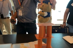 Conducting STEM Lessons Effectively in the Classroom